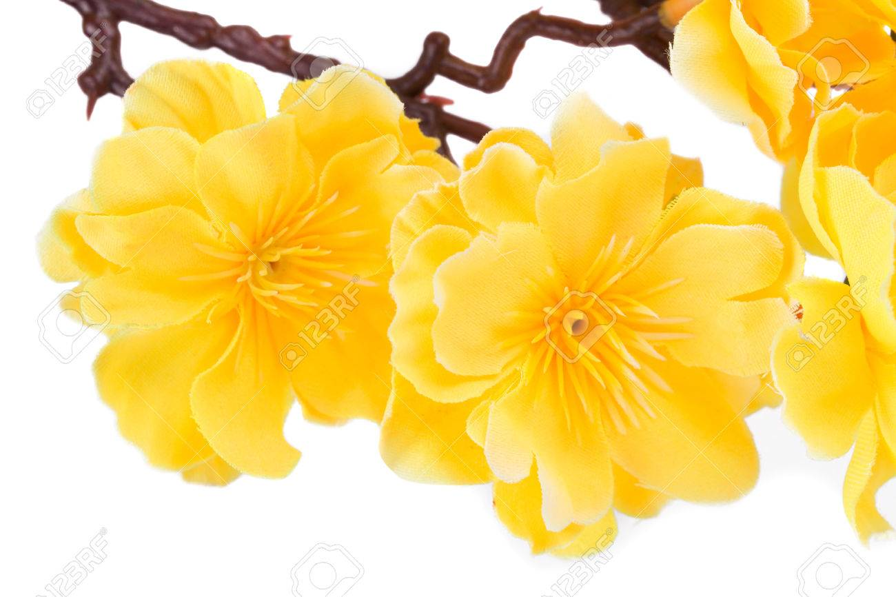Artificial yellow flowers isolated on white background stock photo artificial yellow flowers isolated on white background stock photo 33683570 mightylinksfo Images