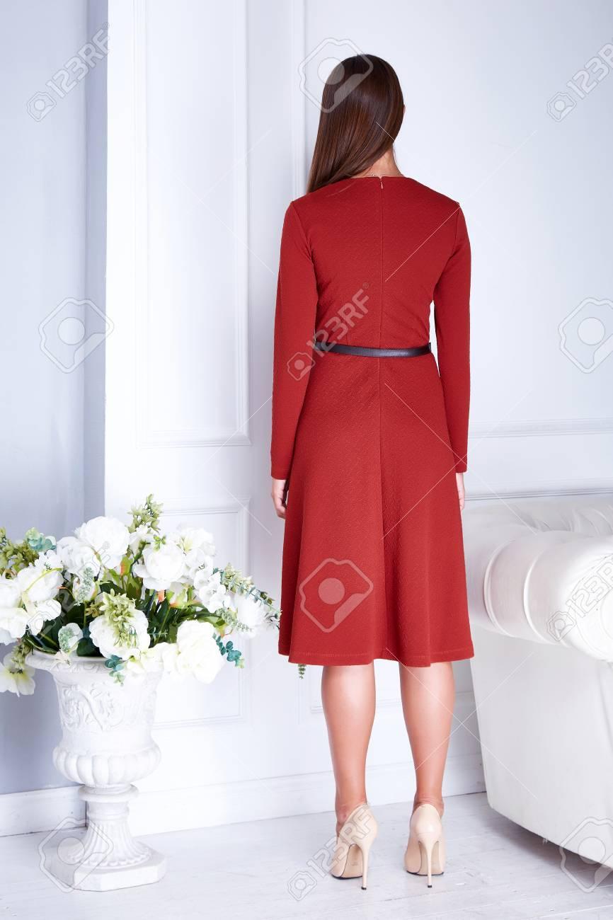 327d36351dfbe Beautiful sexy brunette woman wear elegant fashion silk dress..