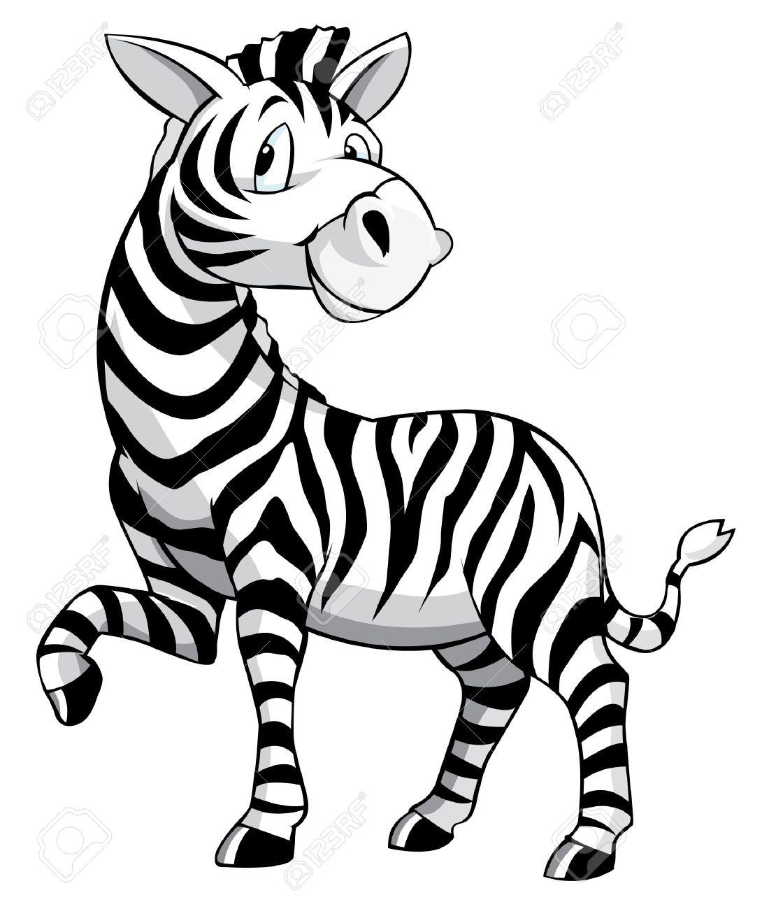 Zebra Cartoon - 32490020