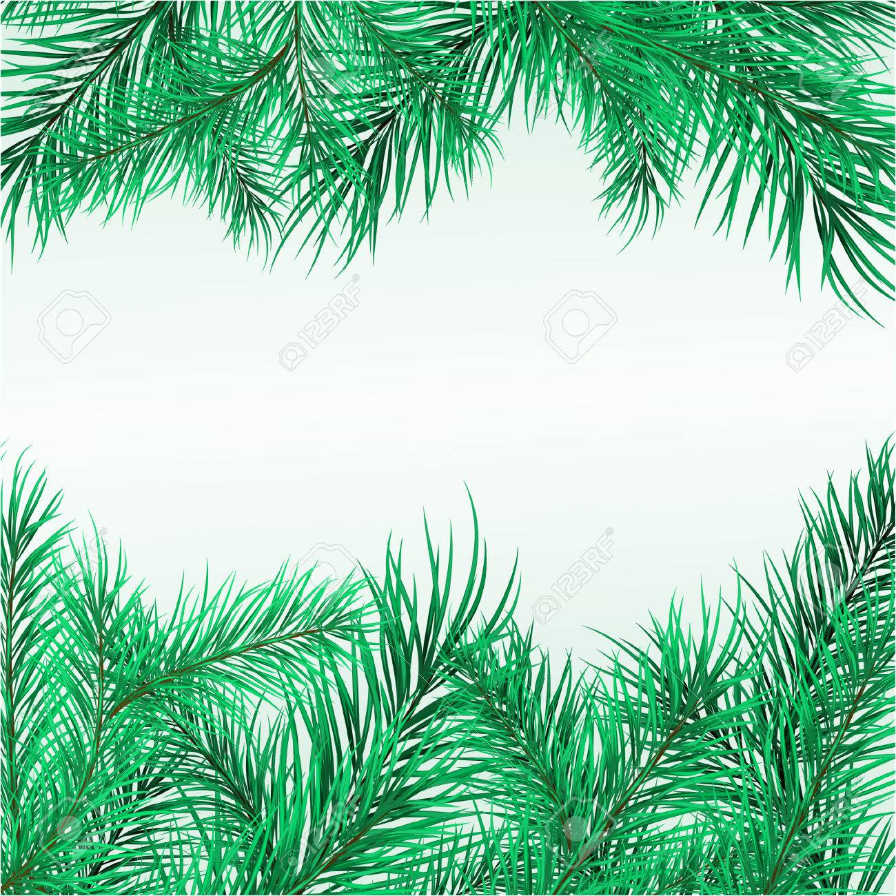 Framework from pine branches. Vector illustration Stock Vector - 3972187