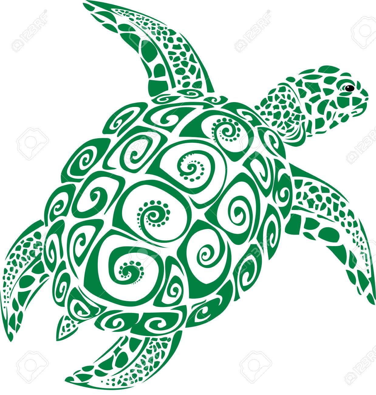 Green sea turtle - 39219426