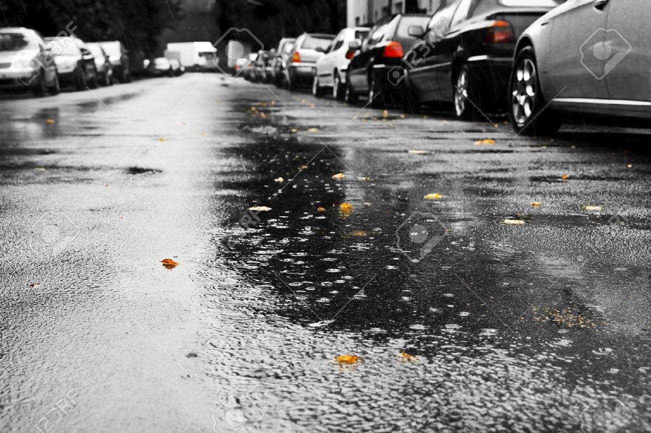 Rain and cars Stock Photo - 12421582