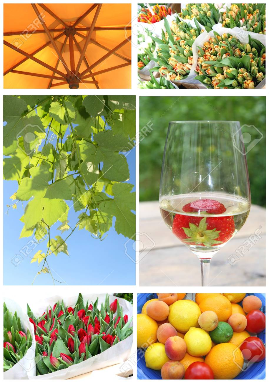 Impressions of the summer Stock Photo - 15028128