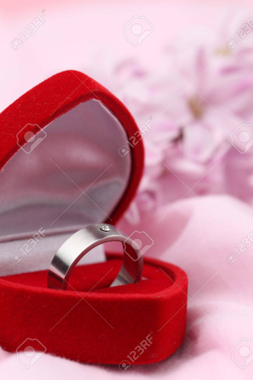 Titanium Engagement Ring With Diamond In A Heart Shaped Box On ...