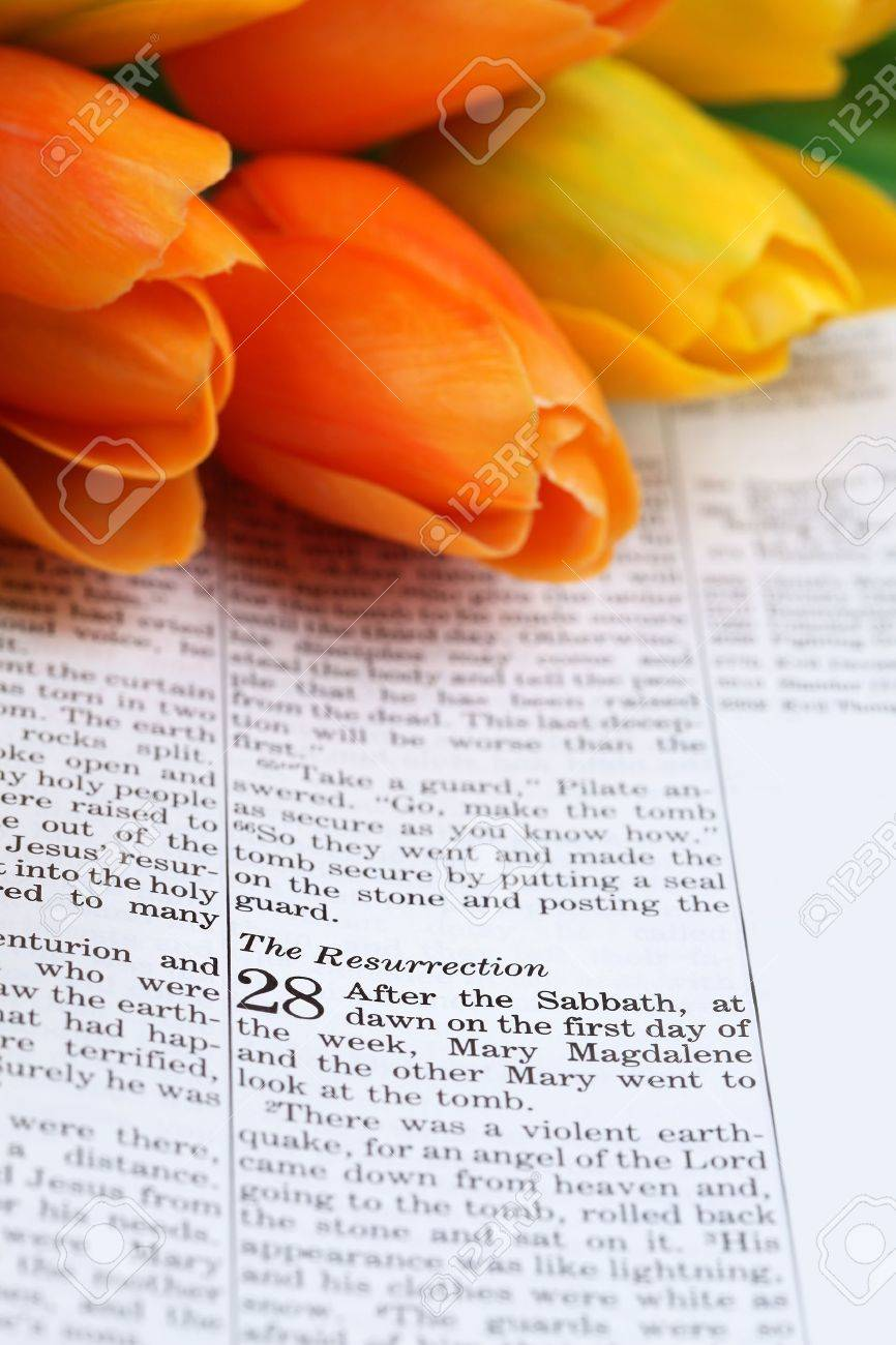 Open Bible with selective focus on the text in Matthew 28 about Jesus' resurrection. Shallow DOF Stock Photo - 8989469