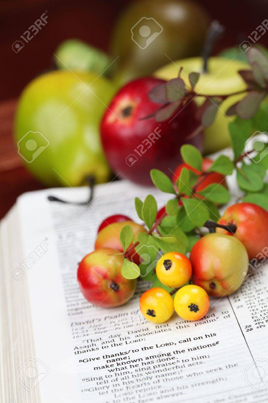 Thanksgiving arrangement with the Bible open to 1 Chronicles 16 8 Stock Photo - 14620544