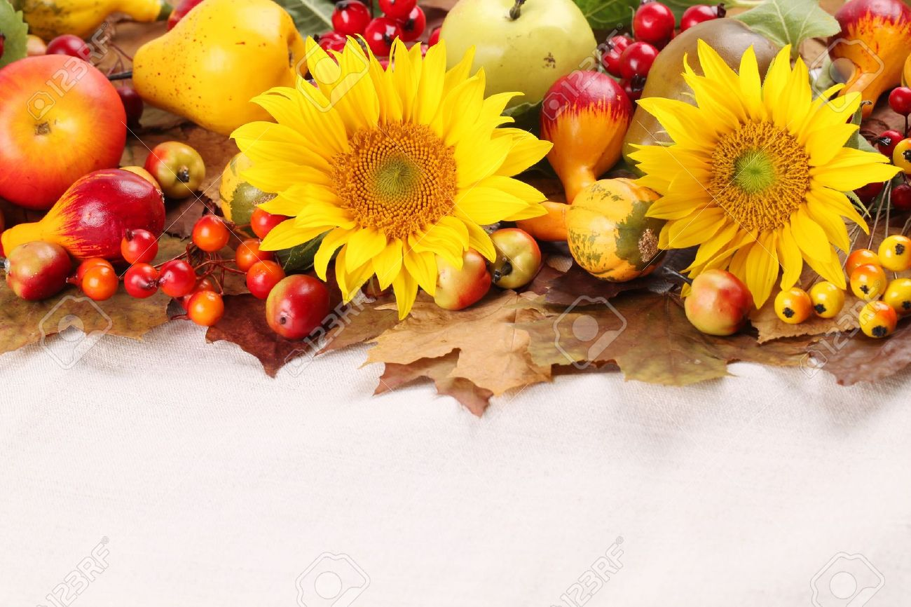 Autumn frame with fruits, pumpkins and sunflowers Stock Photo - 14782004