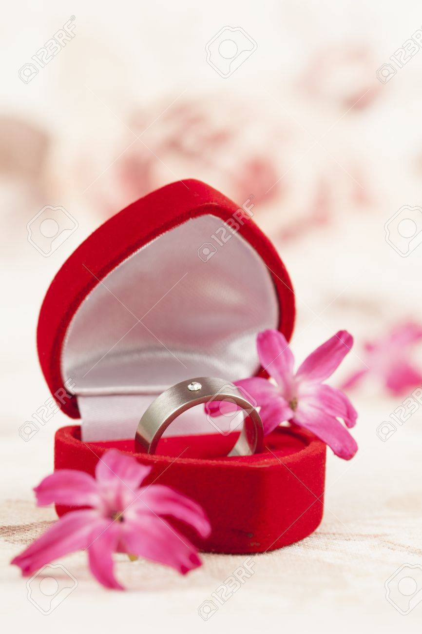 Titanium Engagement Ring With Diamond In A Heart Shaped Box And ...