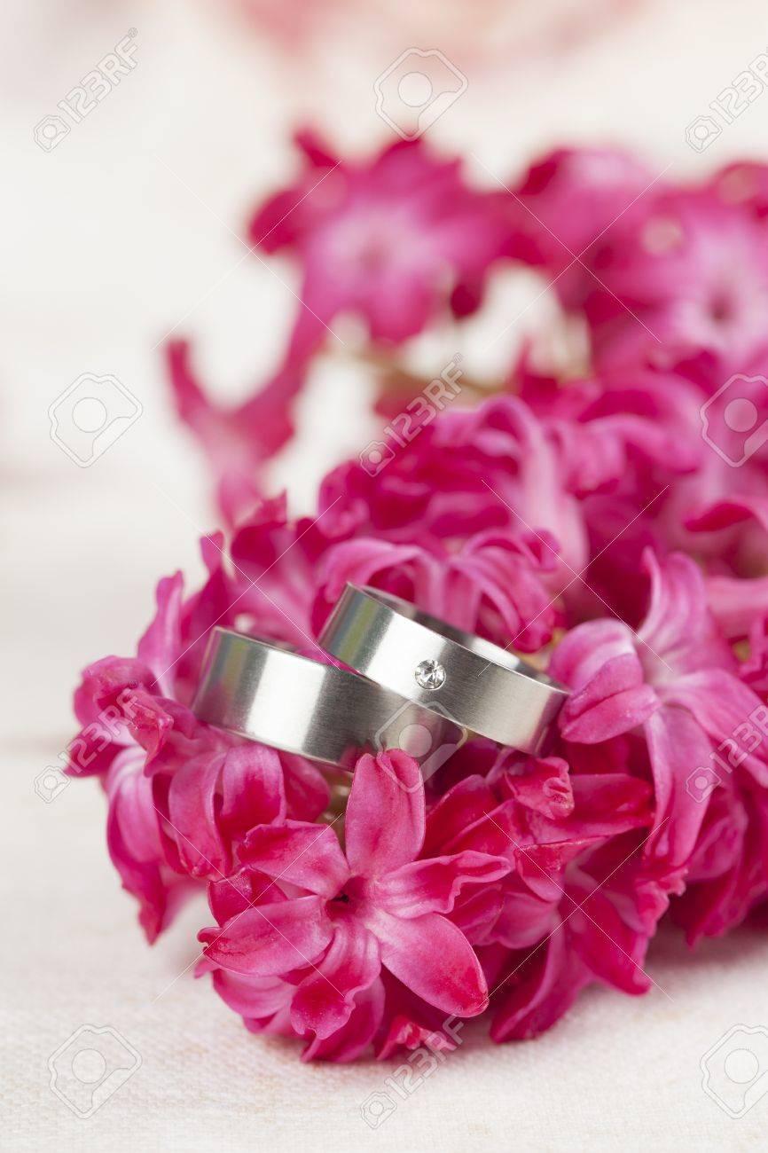 Titanium Wedding Rings On Red Hyacinth Shallow Dof Stock Photo ...