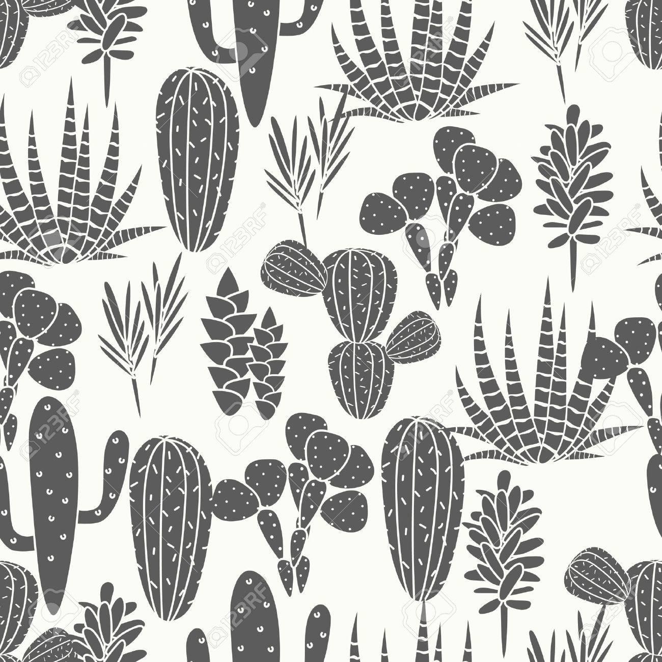 Vecteur De Plante Succulentes Cactus Seamless Botanique Noir Et