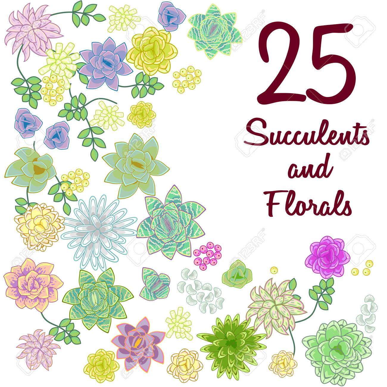 Succulent Garden Clip Art Flowers Element Set Floral Clipart