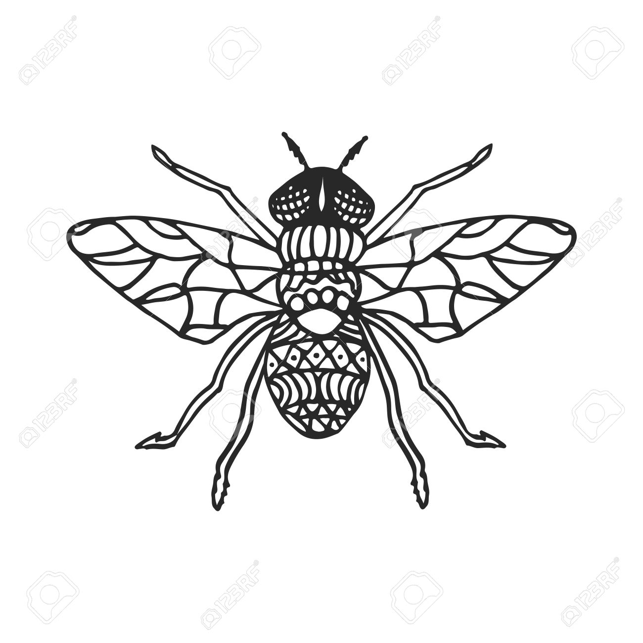 fly stencil pattern vector illustration black cutout insect