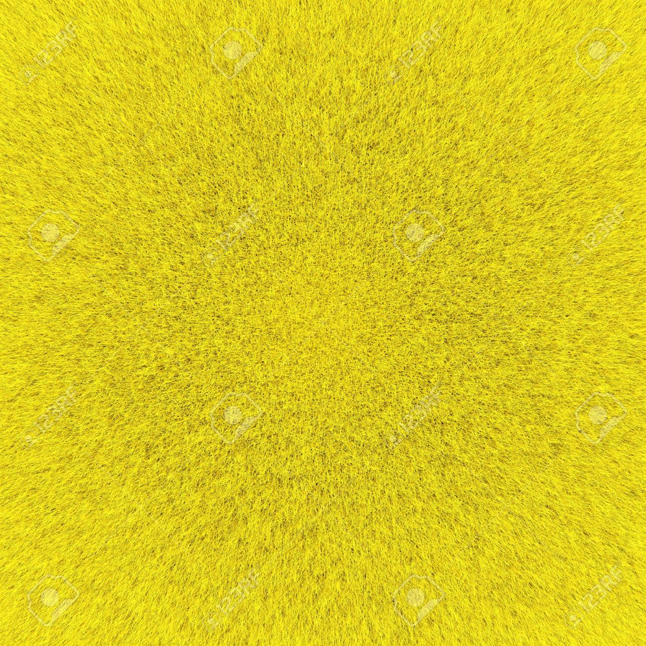 Texture of hair Stock Photo - 12960265