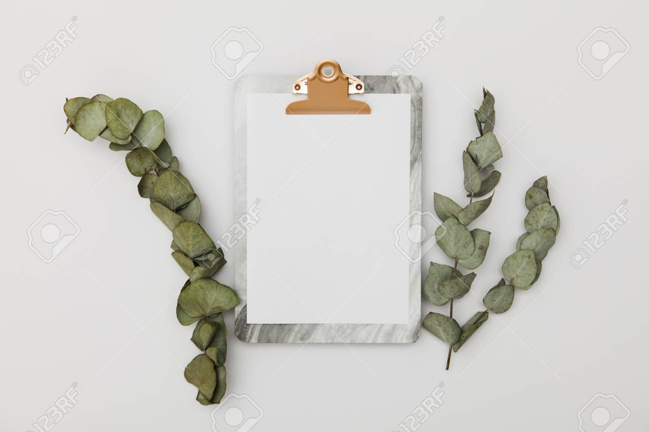 Clipboard with blank paper mockup with eucalyptus leaves, top view - 92645395