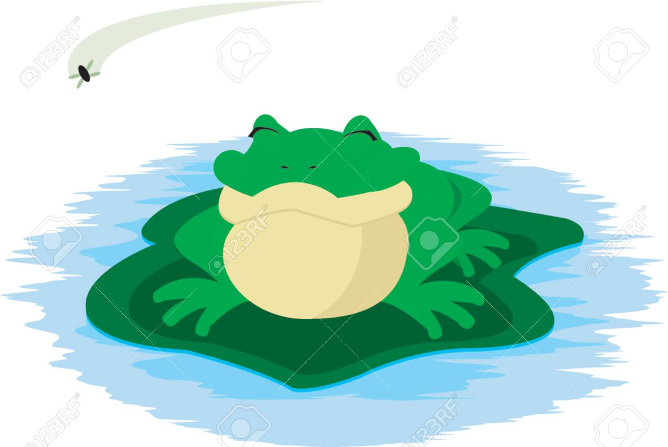 Frog and Fly Stock Vector - 773417