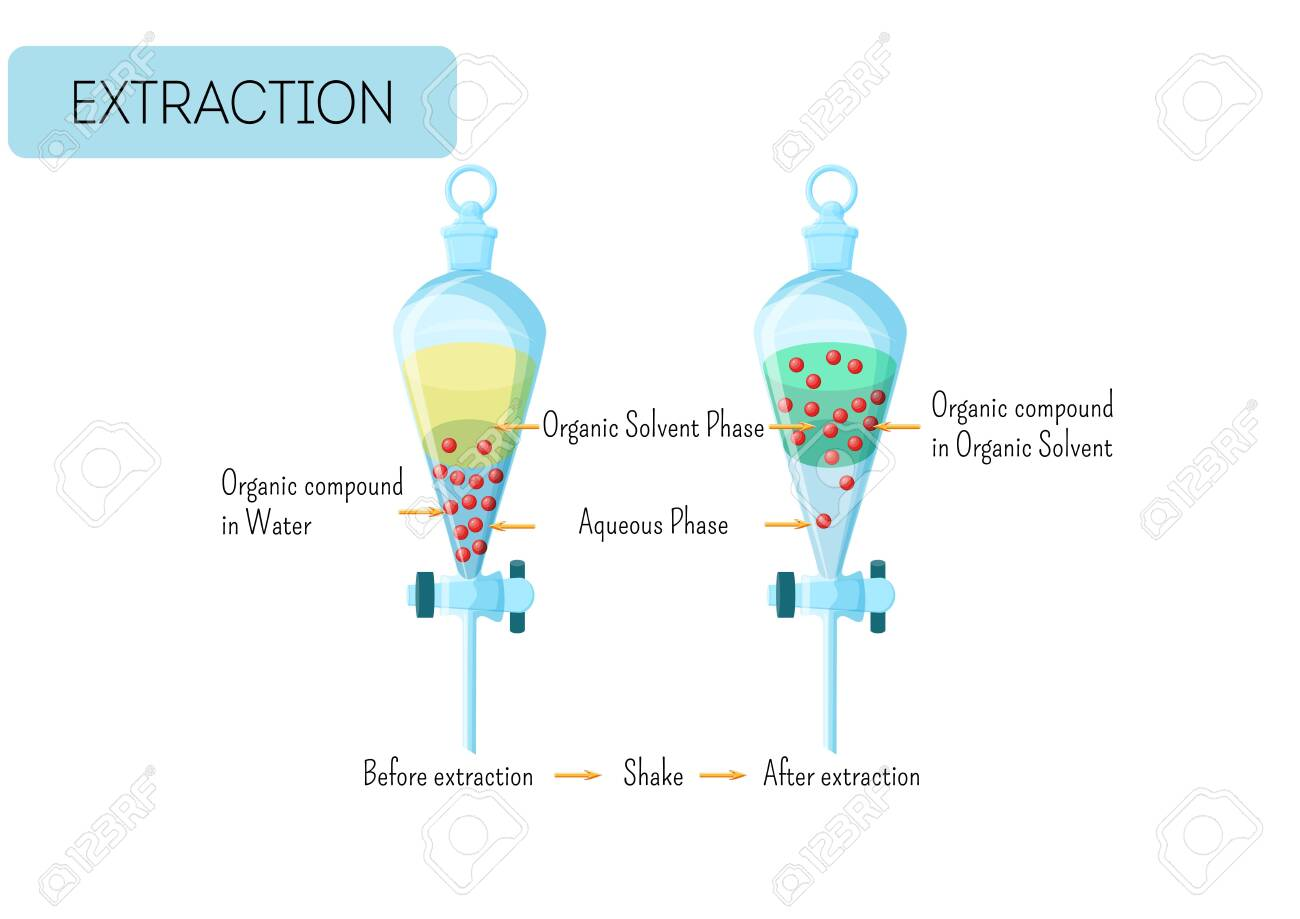 Chemical extraction of organic compound from water solution to organic solvent diagram. Educational chemistry for kids. Cartoon style vector illustration. - 127964531