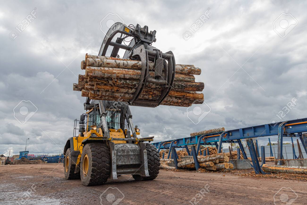 Loading equipment for logging. Log loader for timber, logs. The log loader moves a stack of pine logs. Lumber industry. Woodworking factory. - 148558027