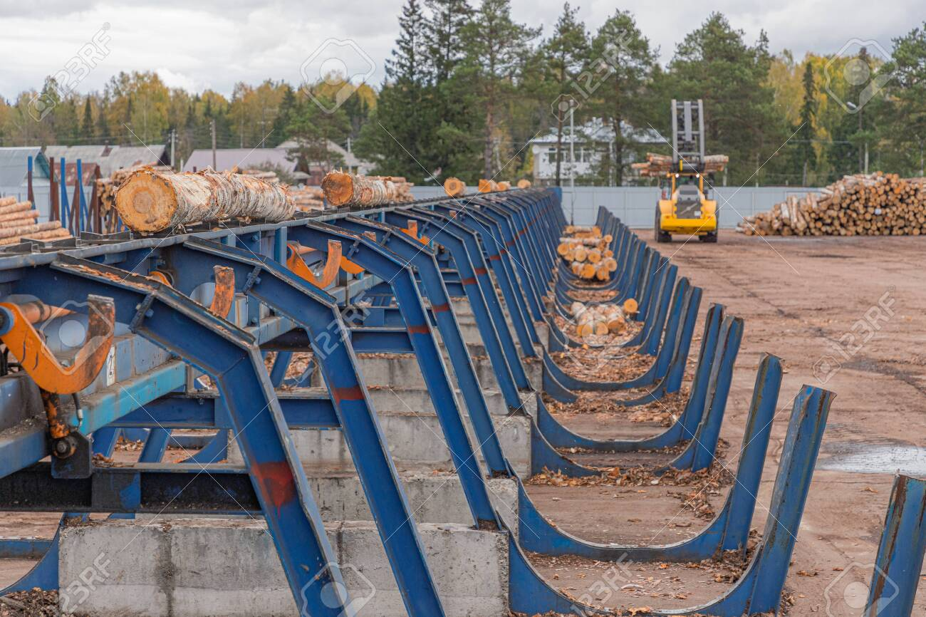 Automated log sorting line. Wheel loader and automatic sorting logs diameter at the sawmill. Lumber industry - 148582488