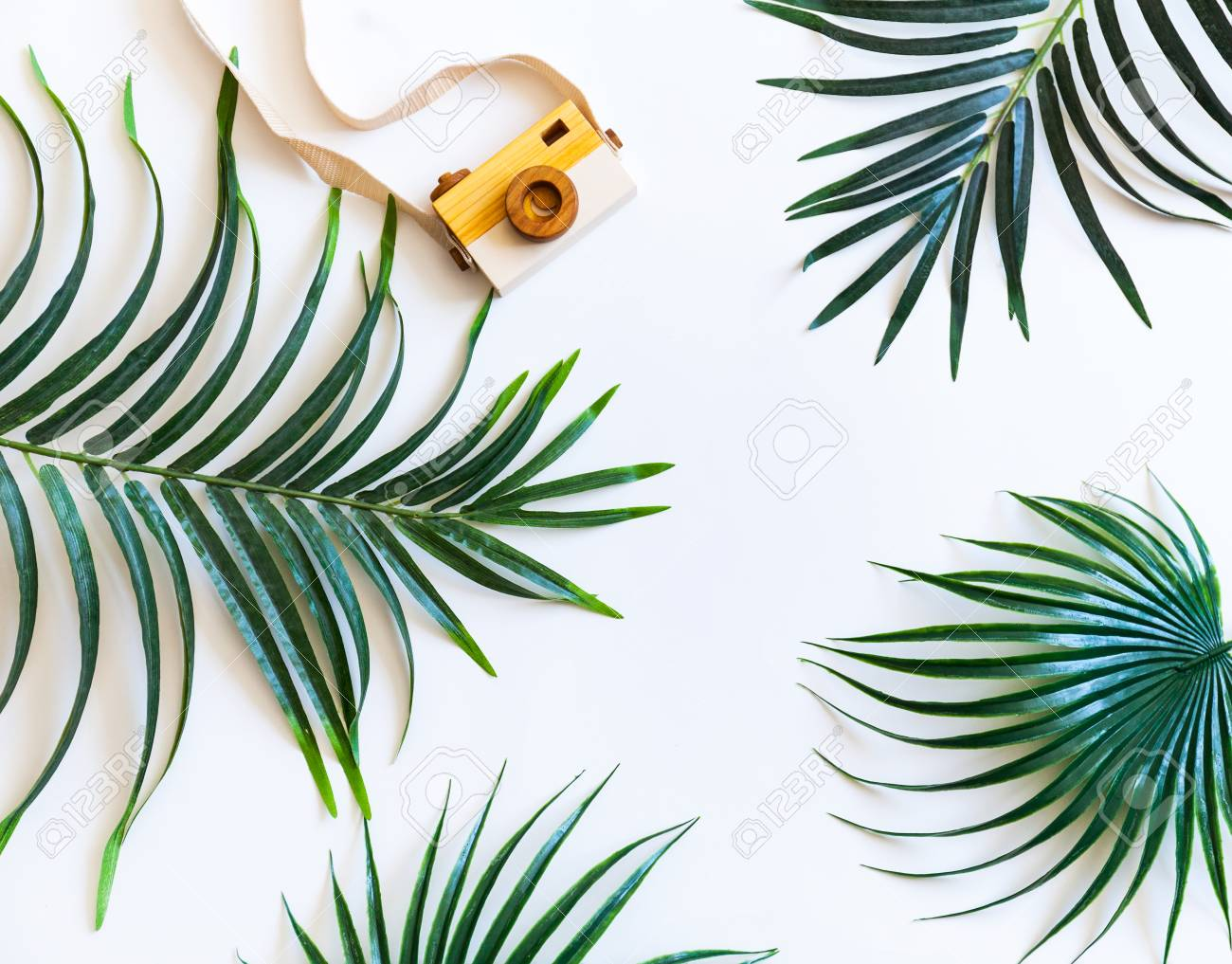 96ad25e4 Tropical palm leaf branches on white background with copy space for text.  Travel vacation concept. Summer background. Flat lay, top view.
