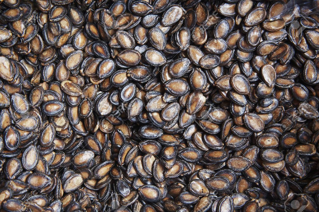 Black Kuaci Seeds Stock Photo Picture And Royalty Free Image Image 79769831