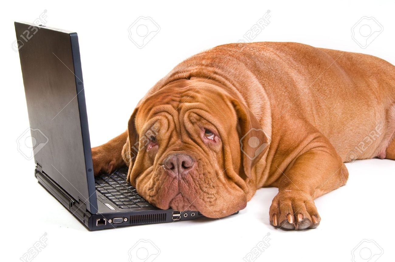 An experienced staff is tired of working Stock Photo - 5888563