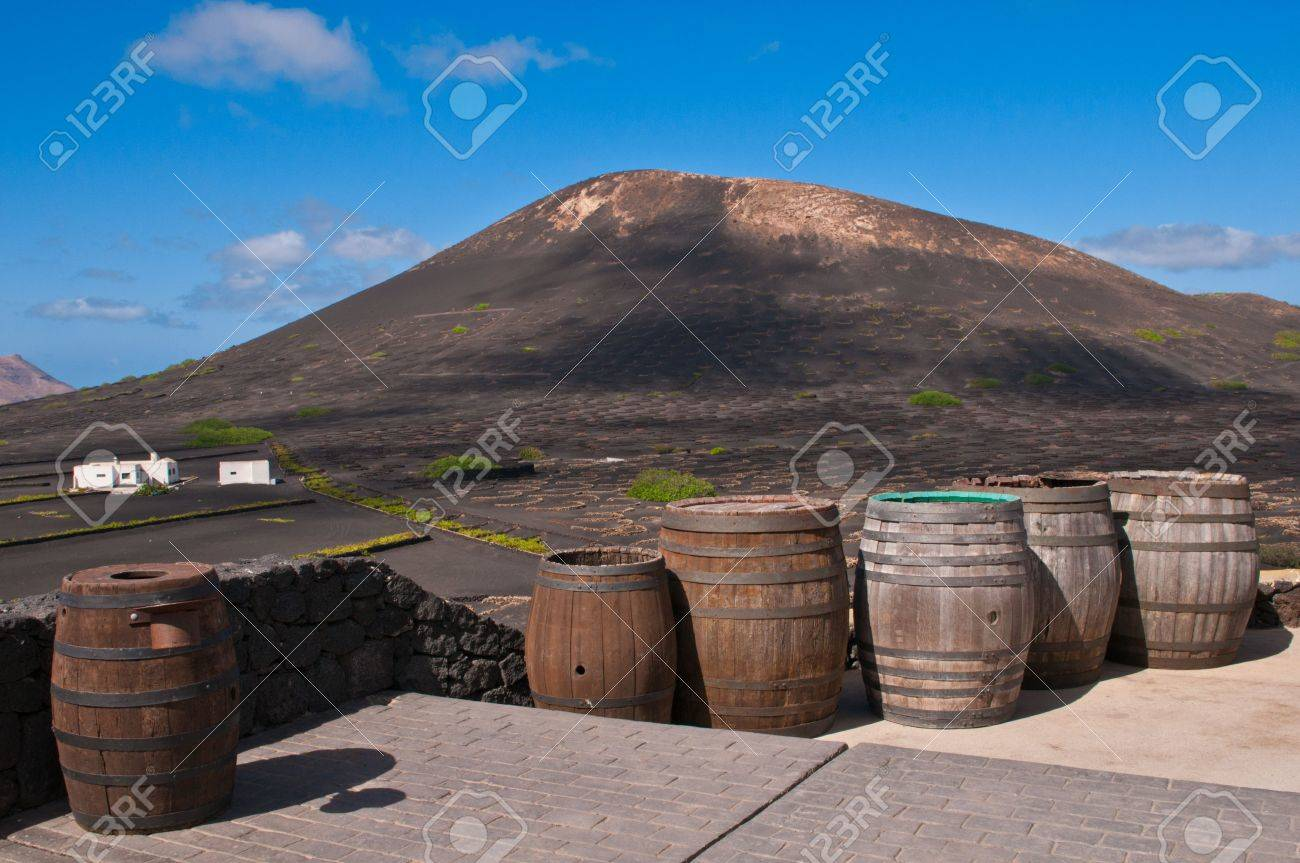 Barrels of Lanzarote Wine against Volcanic Landscape. Stock Photo - 11710307