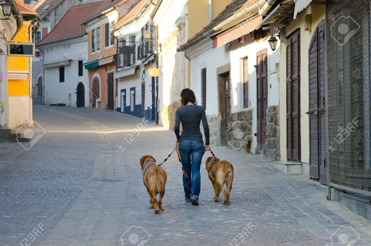Girl is walking in the old street with two big dogs Stock Photo - 11519646