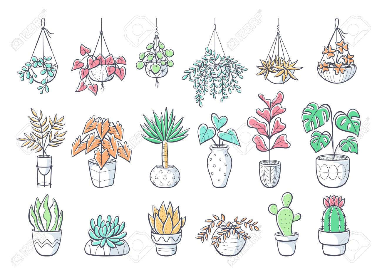 Collection Of Hand Drawn Houseplants Isolated On White Background Royalty Free Cliparts Vectors And Stock Illustration Image 143528841