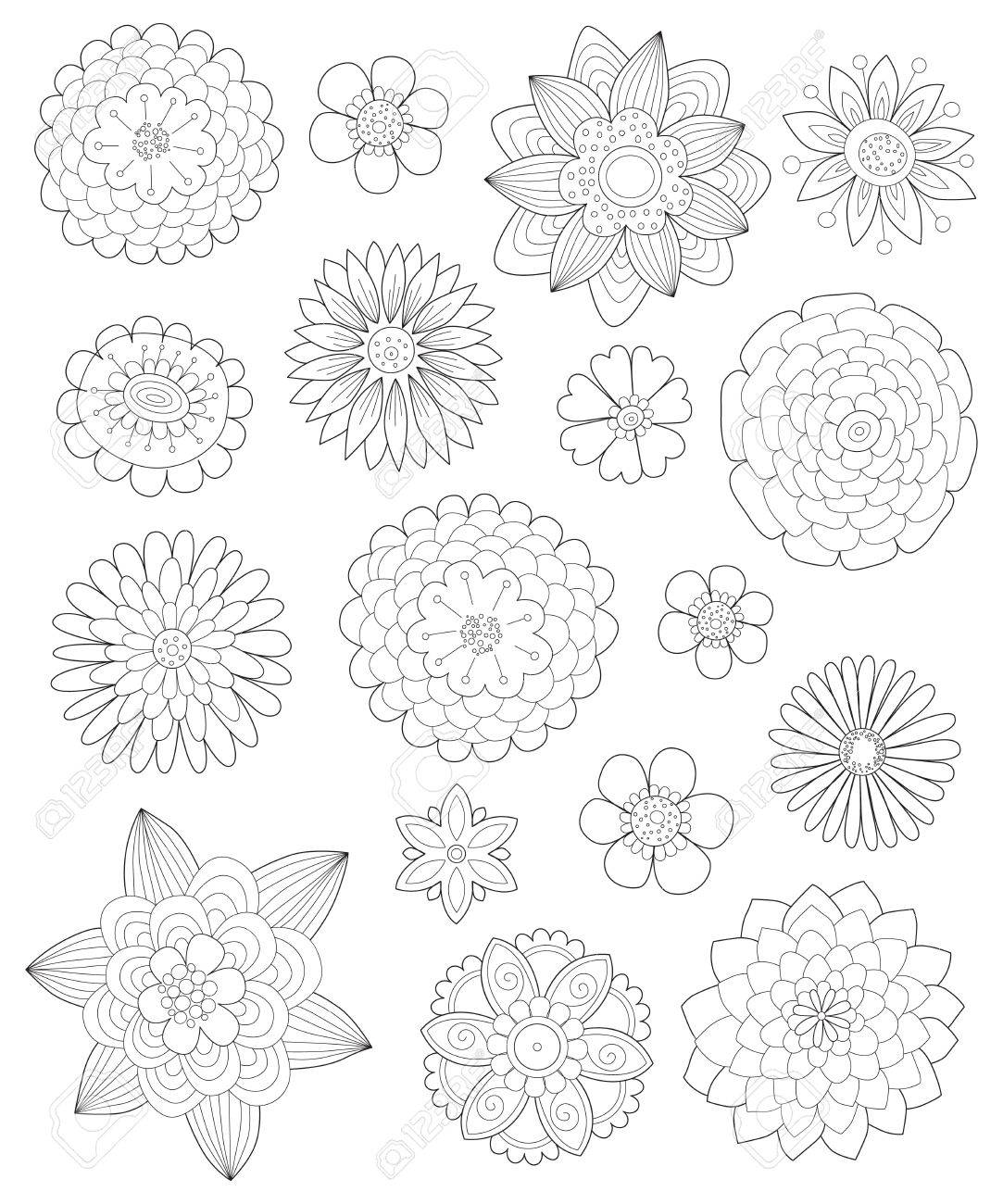 Flores Dibujadas A Mano Para Colorear Páginas Para Adultos, Una ...