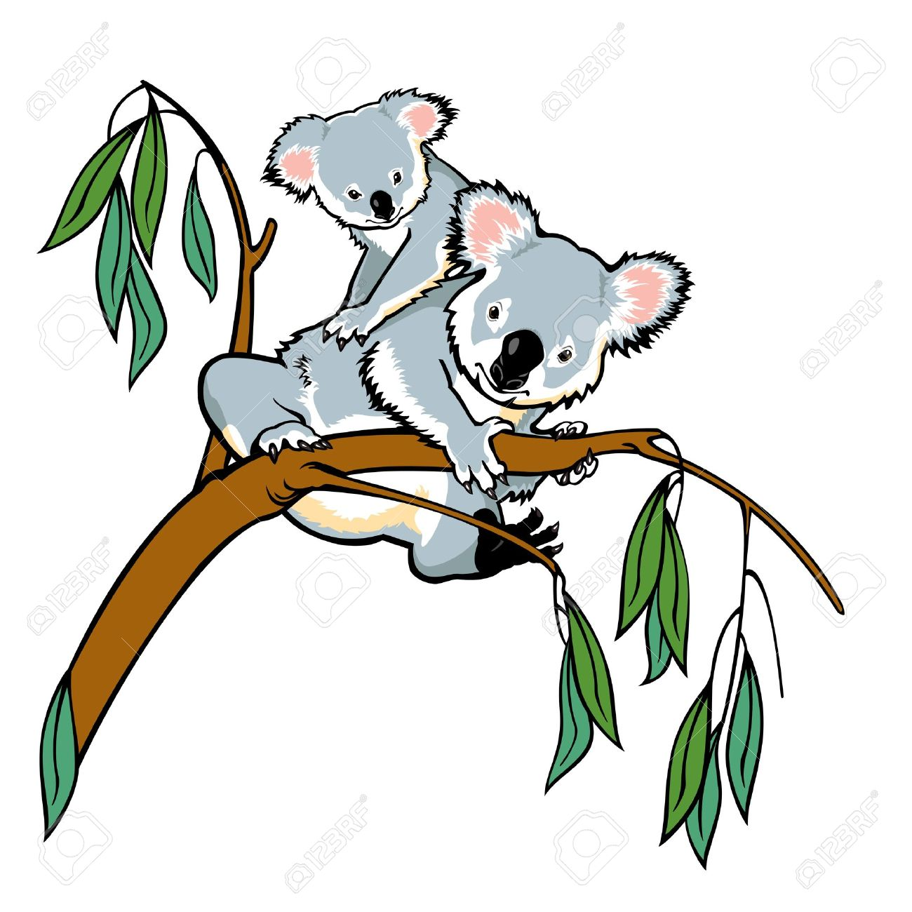 koala with joey climbing eucalyptus tree picture isolated on rh 123rf com koala clipart cute koala clip art free