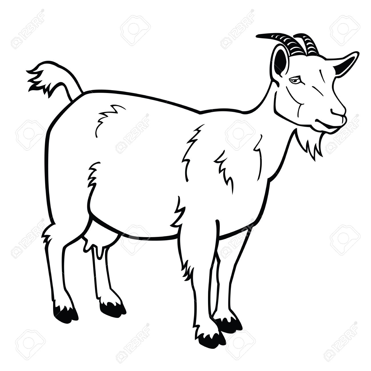 standing goat,black and white vector image,side view contour picture - 15339717