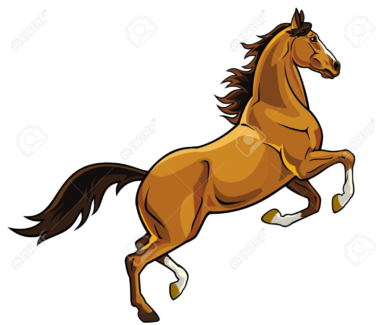 horse rearing image isolated on white background brown stallion rh 123rf com Arabian Stallion Wild Stallions
