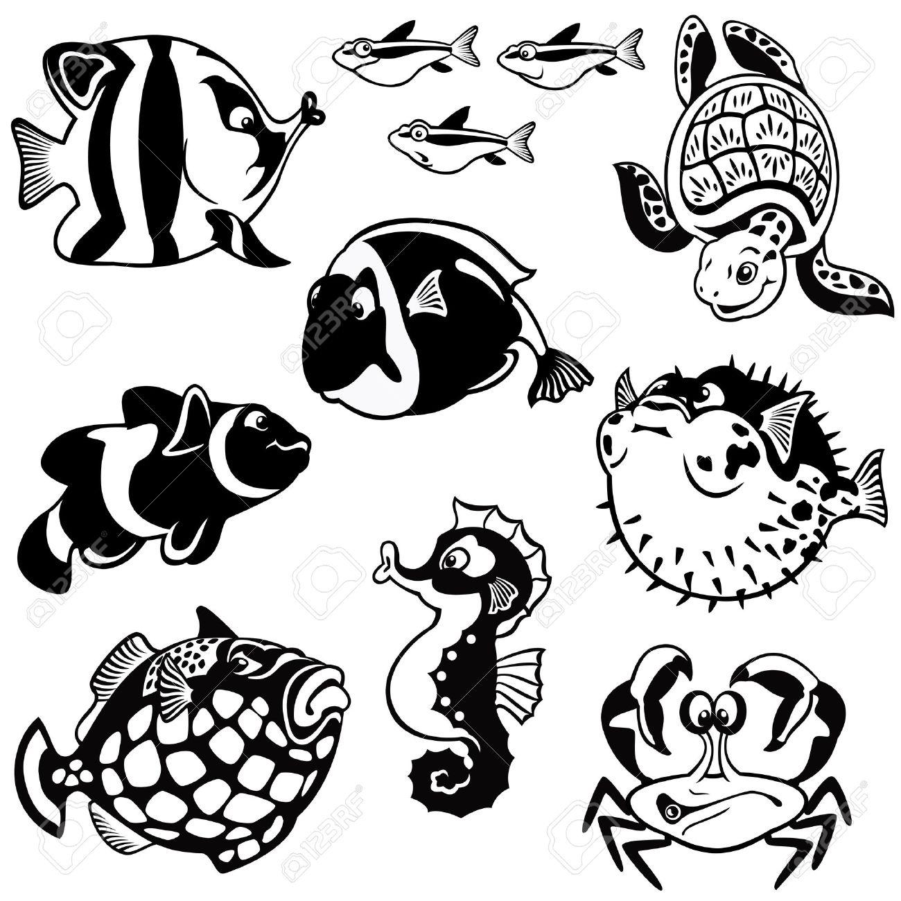 Peces Y Animales Marinos Vector Set Fotos En Blanco Y Negro