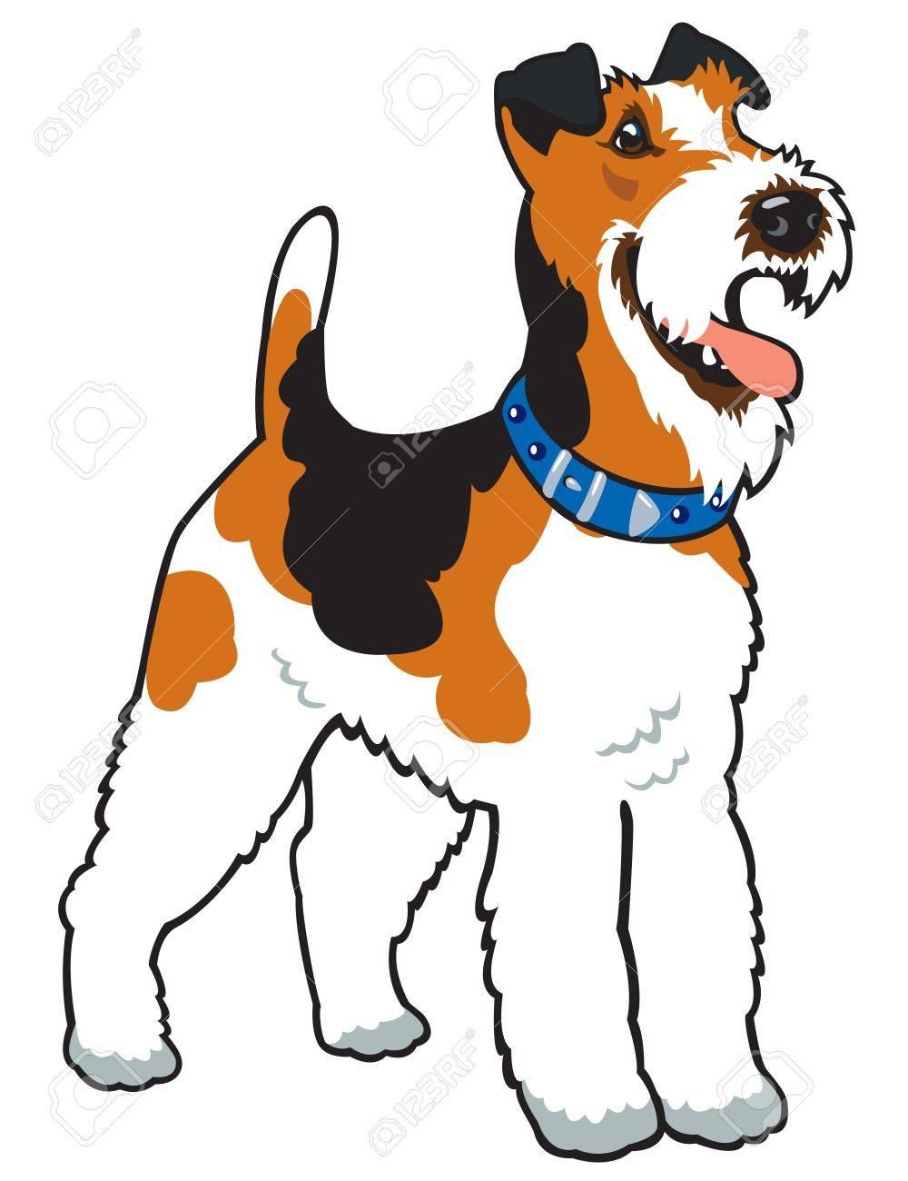 dog,fox terrier breed,vector picture isolated on white background,standing pose Stock Vector - 16526639