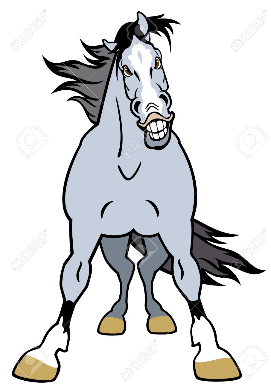 horse front view,cartoon picture isolated on white background Stock Vector - 17144845