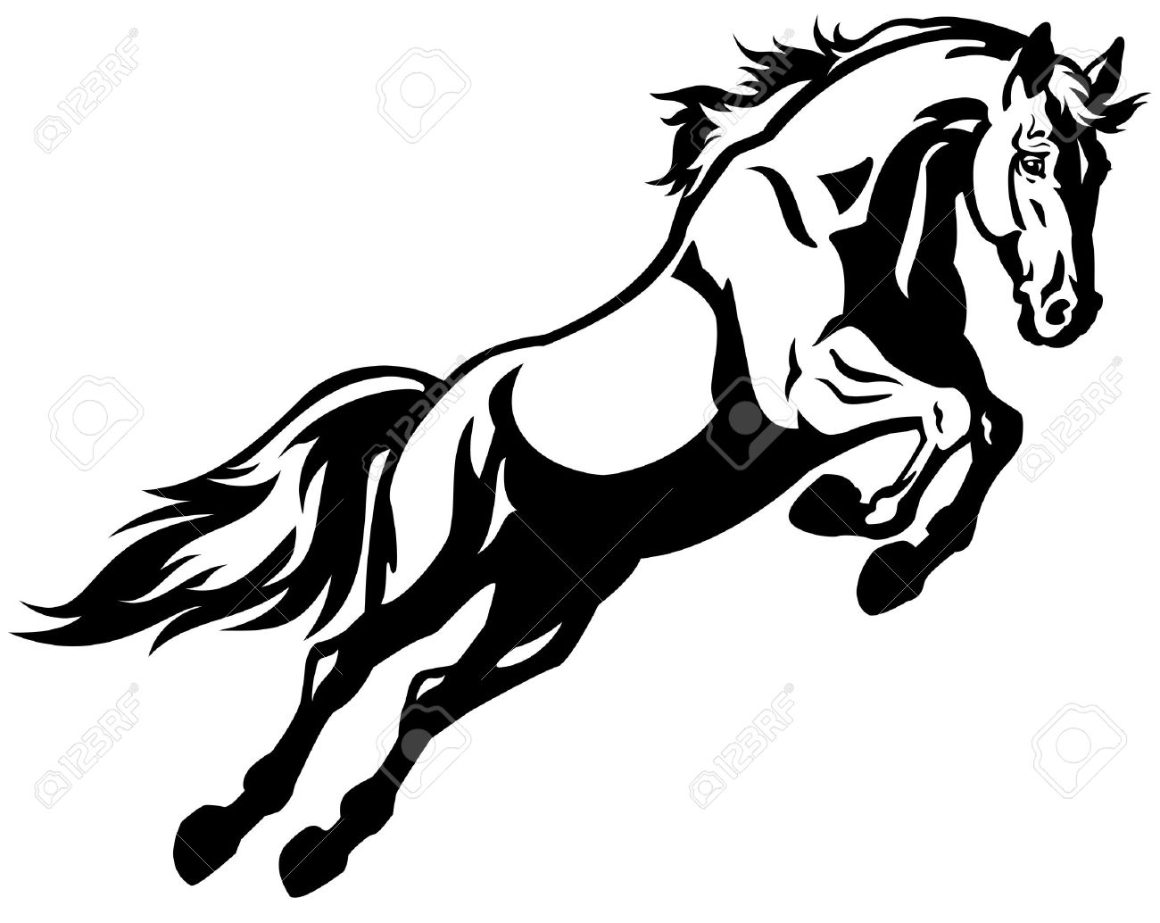 Jumping Horse Black And White Picture Isolated On White Background Royalty Free Cliparts Vectors And Stock Illustration Image 17144846
