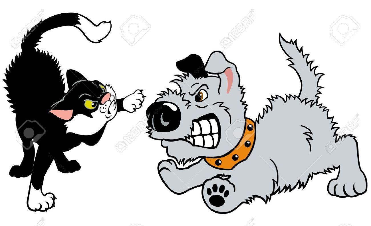 cat and dog fighting,cartoon illustration isolated on white  background,vector..
