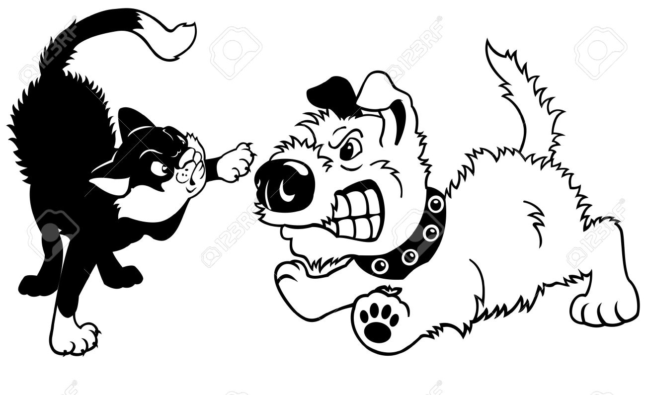 Dogs And Cats Fighting