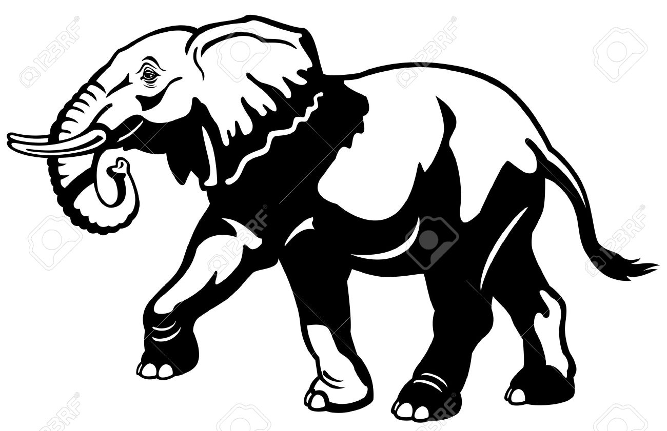 elephant,africa animal,black and white picture,side view illustration Stock Vector - 17624420