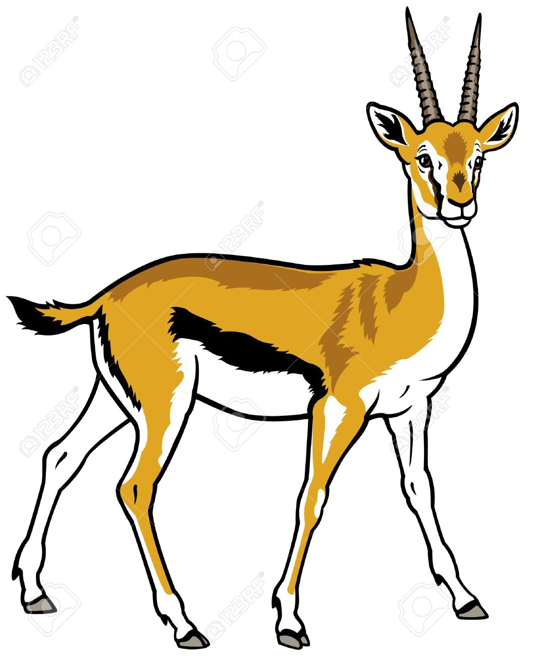 1 299 gazelle stock illustrations cliparts and royalty free gazelle rh 123rf com gazelle clipart free Zebra Clip Art