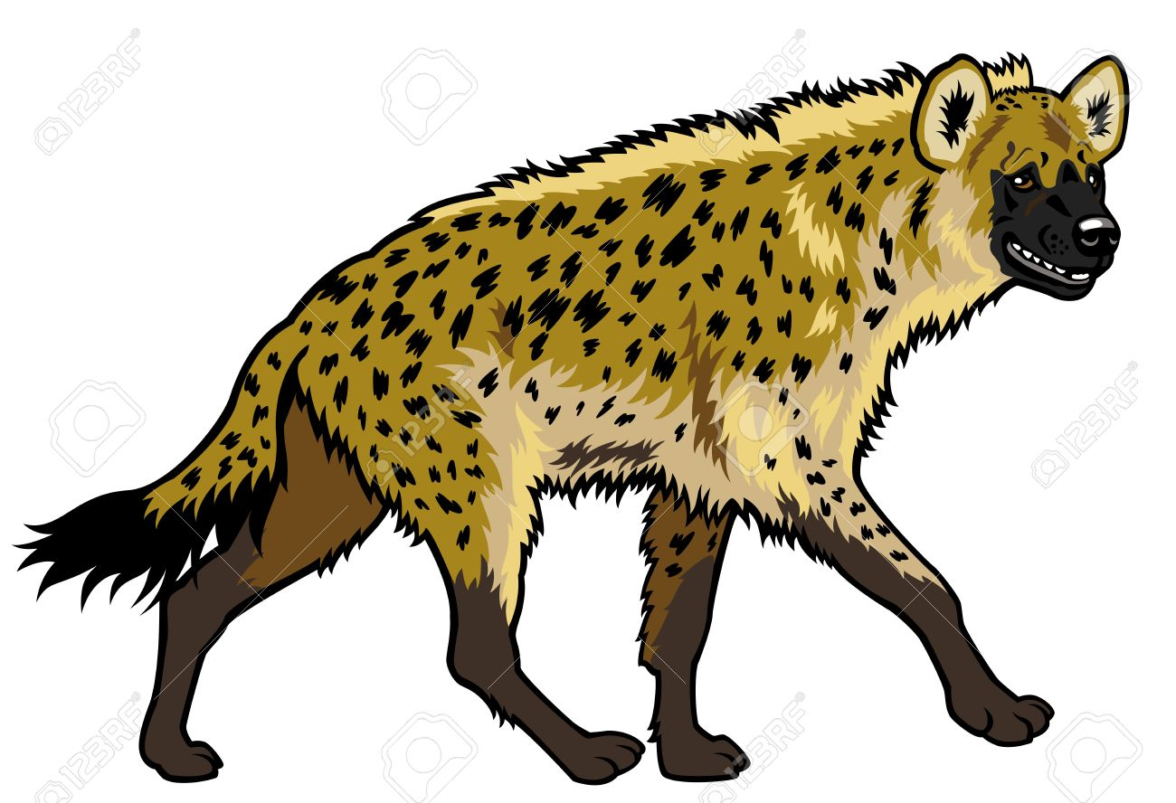 Set with africa animals black white stock vector 169 insima - Spotted Hyena Spotted Hyena Africa Animal Side View Picture Isolated On White Background