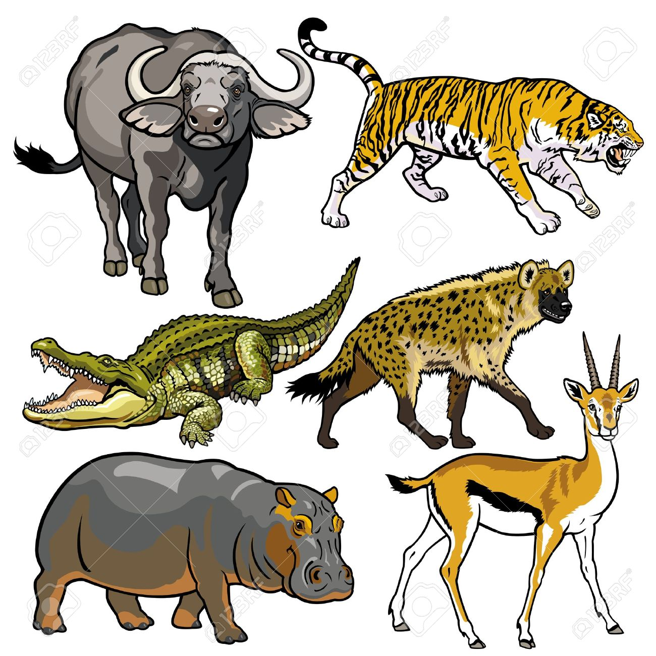 Set with africa animals black white stock vector 169 insima - Spotted Hyena Set With African Animals Wild Beasts Of Africa Pictures Isolated On