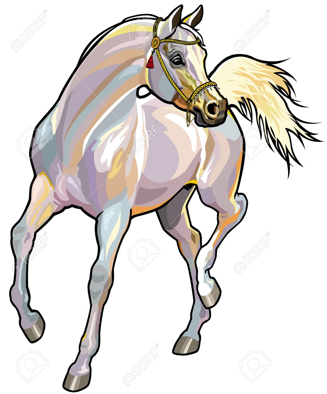 arabian horse with bridle,front view picture isolated on white background Stock Vector - 18873163