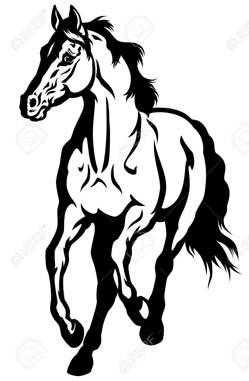 Running horse front view black and white image royalty free cliparts running horse front view black and white image stock vector 23013762 sciox Choice Image