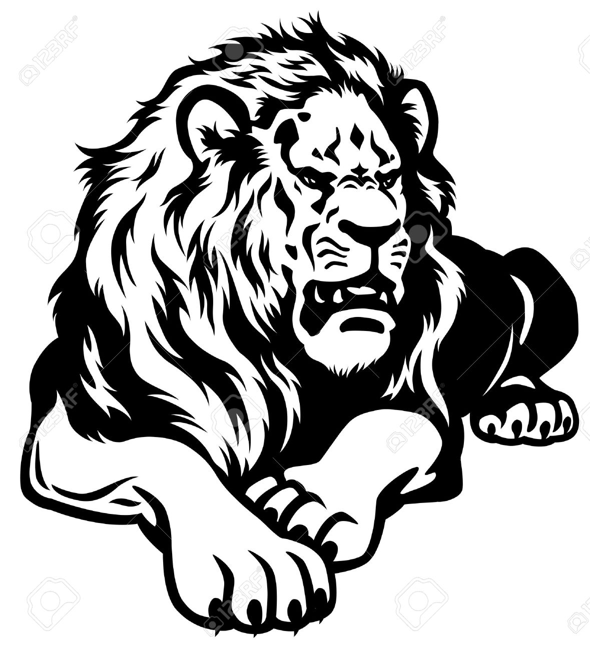 Lion black and white illustration stock vector 23013774