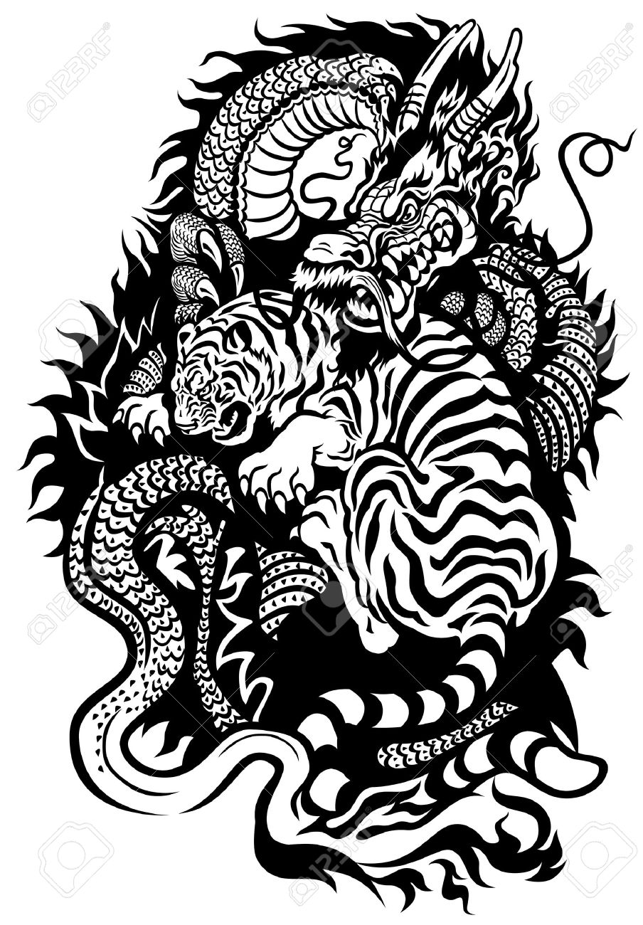 6e228428b dragon and tiger fighting black and white tattoo illustration Stock Vector  - 23655173