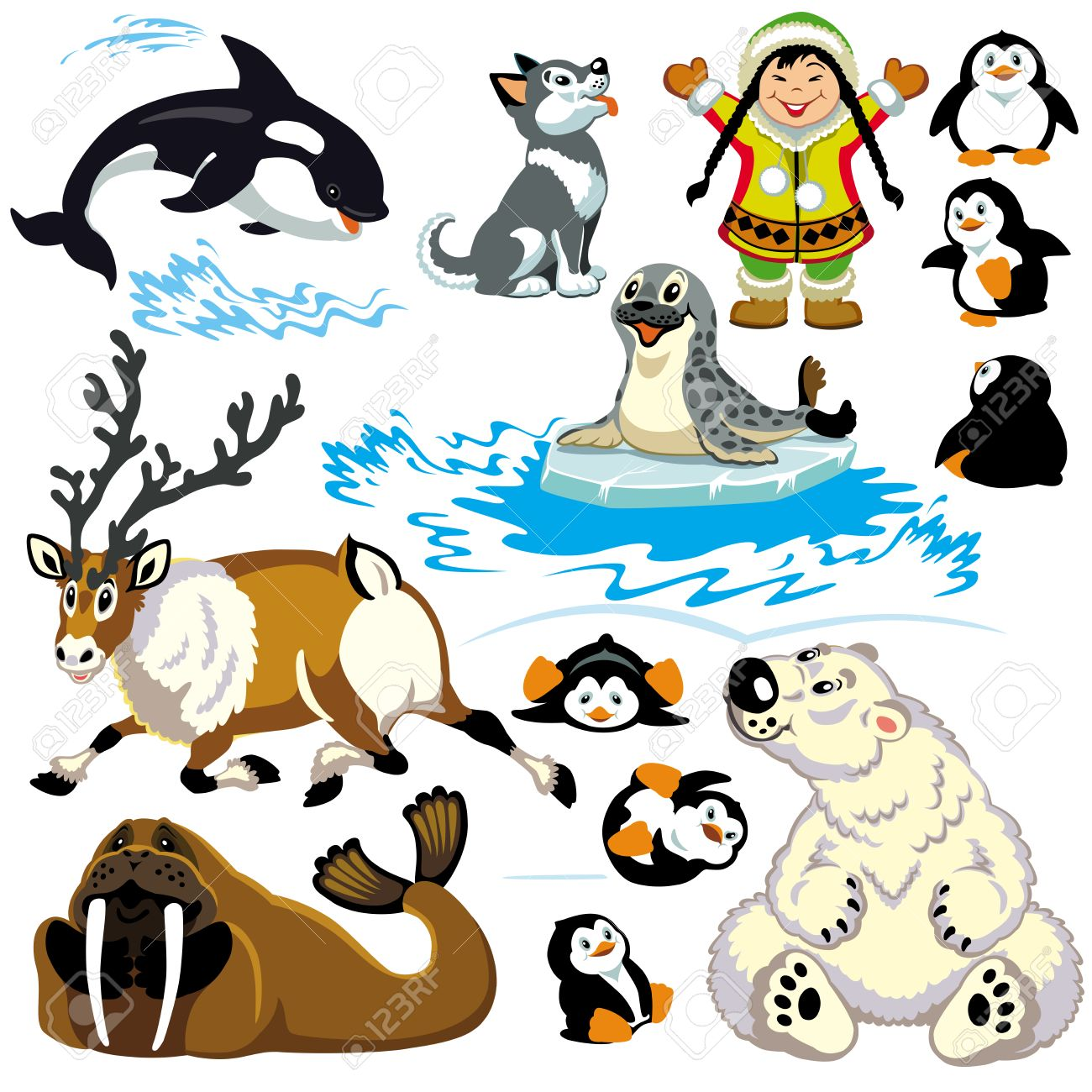 set with cartoon animals of arctic isolated pictures for little kids stock vector 24027404 - Kids Cartoon Animals
