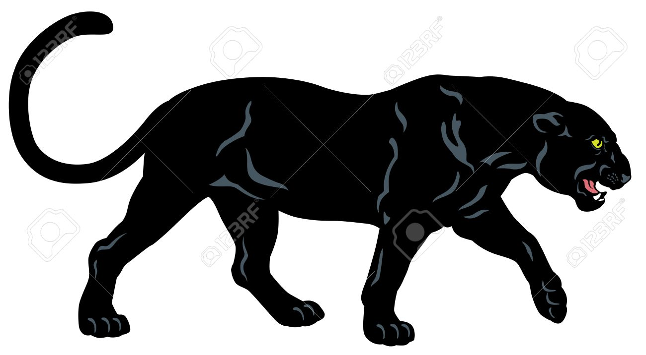 Set with africa animals black white stock vector 169 insima - Leopardo Fondo Blanco Pantera Negro Imagen De La Vista Lateral Aislado En Fondo Blanco