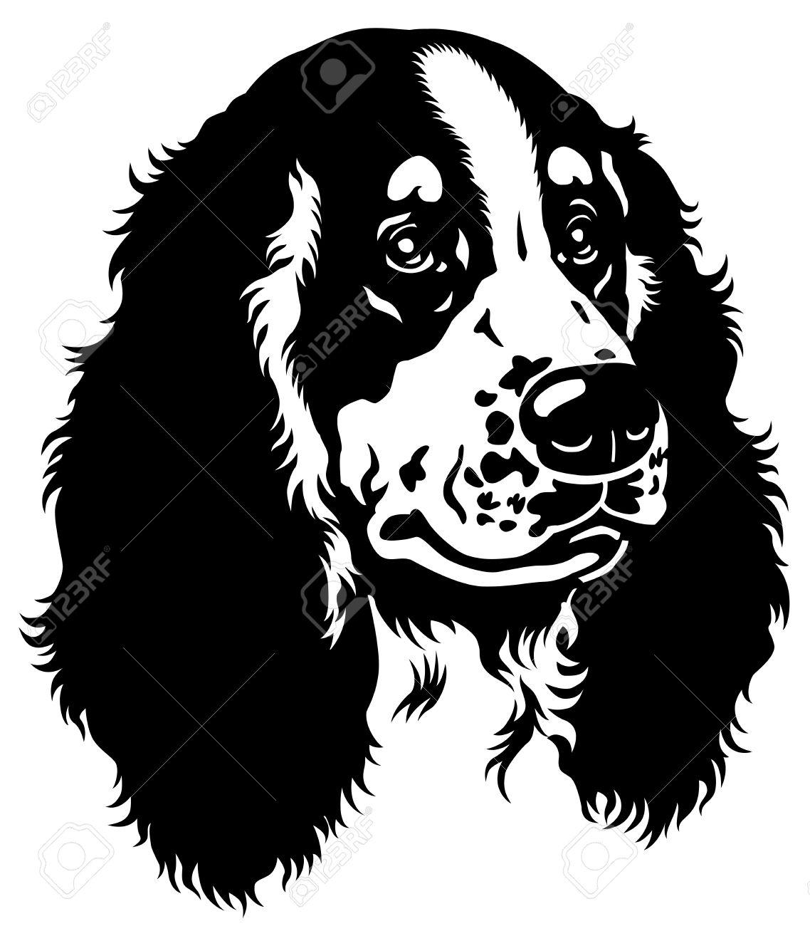 Cocker Spaniel: Dog Head, English Cocker Spaniel Breed, Black And White  Image