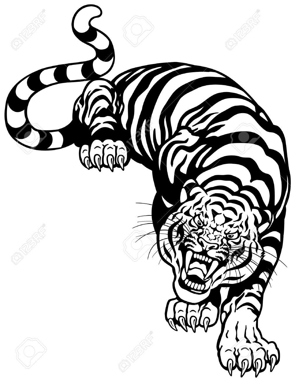 Tigre Enojado Ilustración En Blanco Y Negro Del Tatuaje